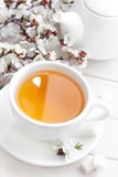 Tea. Fresh herbal tea in a cup Stock Photography