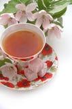 Tea. Flower green morning pink red tea teacup white Royalty Free Stock Photo