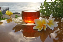 Cup of tea on the sea Royalty Free Stock Photos
