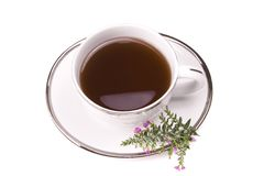 Tea. Cup on white with flower Stock Images