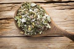 Tea, alternative medicine. Royalty Free Stock Images