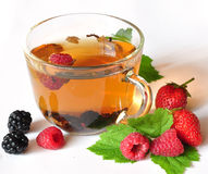 Free Tea And Berries Stock Photography - 15511882