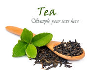 Free Tea And Leaves Royalty Free Stock Photography - 27276937
