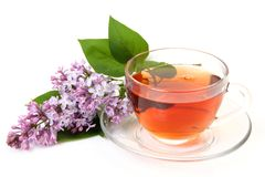 Tea And Lilac Royalty Free Stock Photo