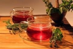 Tea with aromatic herbs. Stock Photo