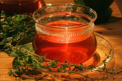 Tea with aromatic herbs. Stock Photos