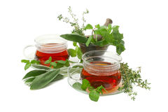 Tea with aromatic herbs. Royalty Free Stock Photos