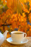 Tea And Autumn Foliage Stock Photos