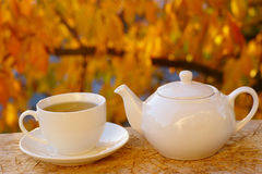 Tea And Autumn Foliage Stock Photo