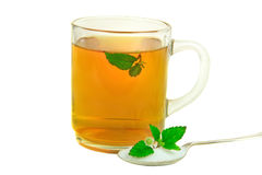 Tea with Aztec Sweet Herb Stock Photos