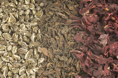 Tea background. Three sorts of tea. Green, black and hibiscus Stock Image