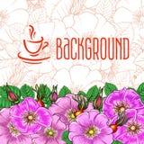 Tea background Royalty Free Stock Image