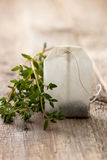 Tea bag and fresh thyme Royalty Free Stock Photo