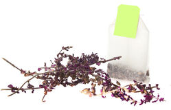 Tea bag and lavender flower Royalty Free Stock Photo