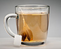 Tea bags in cup. Two tea bags in glass cup with studio background Stock Photos