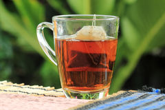 Tea bags on the grass. In garden background Stock Image
