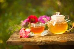 Tea in beautiful cup. Green tea in beautiful cup Stock Photo