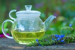 Tea in beautiful cup Royalty Free Stock Image