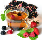 Tea and berries Stock Image