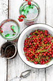 Tea with berries and leaves of currant Stock Photo