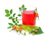 Tea from berries rose hips and linden seeds Stock Photos