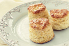 Tea Biscuits Stock Image