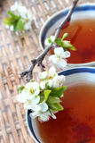 Tea and Blossom. Tea in antique Chinese Porcelain cups (genuine 18th Century) and peach blossom on wicket table Stock Photos