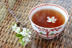 Tea and Blossom Royalty Free Stock Photography