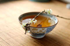 Tea and blossom plum Royalty Free Stock Images