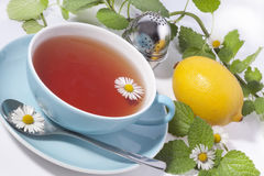 Tea in a blue cup with daisy Royalty Free Stock Image