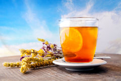 Tea and blue sky Royalty Free Stock Image