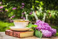 Tea with book in the garden. Cup of tea, book and garden. Copy space stock photography