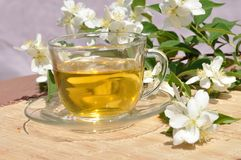 Tea with branch jasmine Royalty Free Stock Image