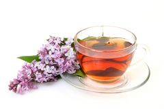 Tea and branch of a lilac Stock Images