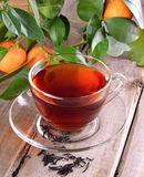 Tea and branch of tangerines Stock Photo