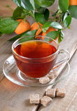 Tea and branch of tangerines Royalty Free Stock Photos