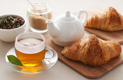 Tea break Royalty Free Stock Photo