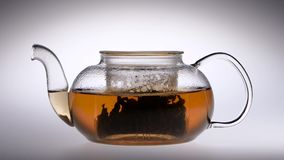 Tea is brewed in a glass teapot. Slow motion. Studio. Tea is brewed in a glass transparent teapot, after the pouring water cookware close lid, studio with white stock video footage