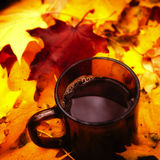 Tea in bright autumn leafes. Seasonal photo Stock Images