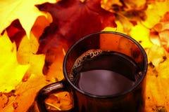 Tea in bright autumn leafes. Seasonal photo Stock Photography