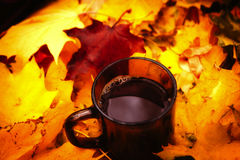 Tea in bright autumn leafes Royalty Free Stock Images