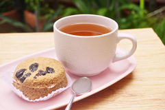 Tea and cake in garden Royalty Free Stock Photography