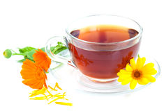 Tea with calendula Stock Image