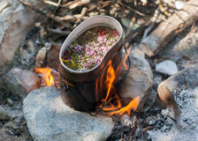 Tea on campfire. Preparing tea on campfire in wild camping Stock Images