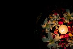 Tea candles and flowers floating on water stock images