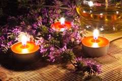 Tea candles and lavender stock images