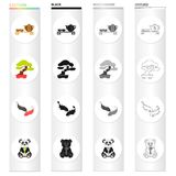 Tea ceremony, bonsai tree, Japanese sacred carp, koi, panda bamboo bear. Japan set collection icons in cartoon black. Monochrome outline style vector symbol Stock Images