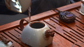 Tea ceremony close up in slow motion stock video footage
