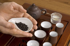 Tea ceremony. Tea in hands of tea ceremony master close up. Fragment of tea ceremony called Acquaintance with tea Royalty Free Stock Photos