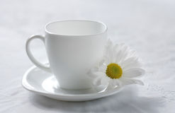 Tea chamomile. The Setting of the table to drinking of tea.Sound feeding Stock Photography